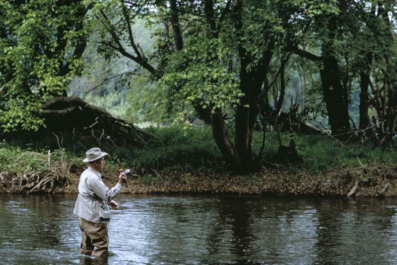 Read more about the article Périodes d'ouverture de la pêche